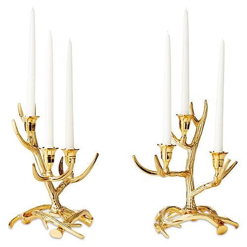 S/2 Tangled Antler Candelabras, Gold