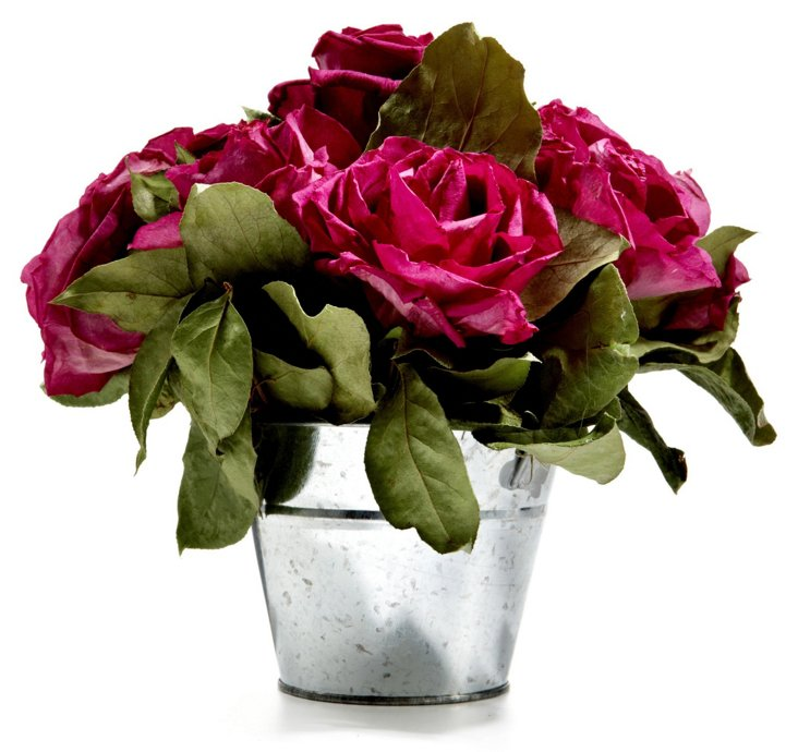 "9"" Roses in Bucket, Dried"