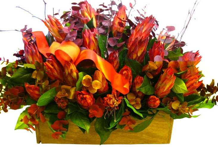 "15"" Protea Arrangement in Basket, Dried"