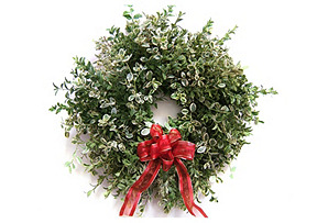 "17"" Rhamnus Wreath w/ Bow, Dried"
