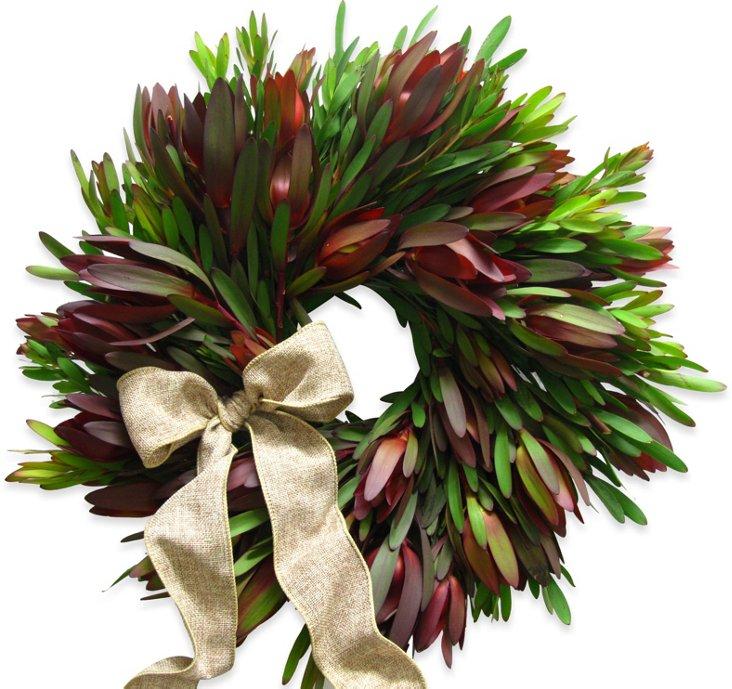 "18"" Sunset Protea Wreath, Dried"