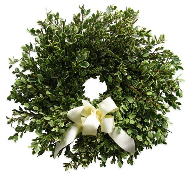 "18"" Natural Rhamnus Wreath, Dried"