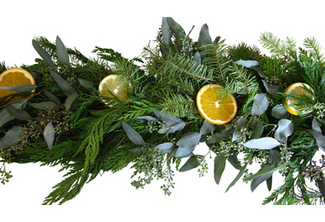6' Citrus Garland, Dried