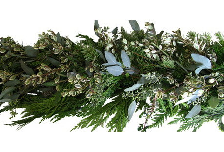 6' Rhamnus Garland, Dried