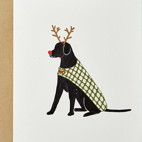 S/10 Reindeer Dog Note Cards