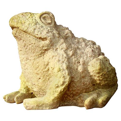 "5.75"" Croak Toad, White Moss"