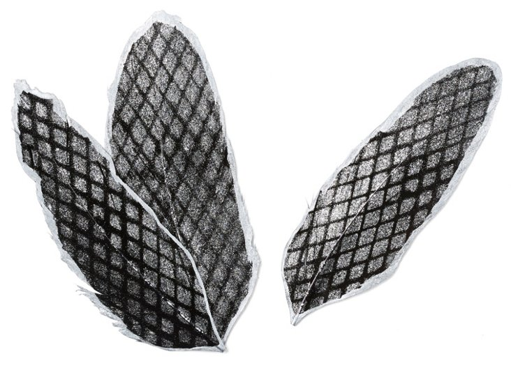 S/6 Silver Diamond Printed Feathers