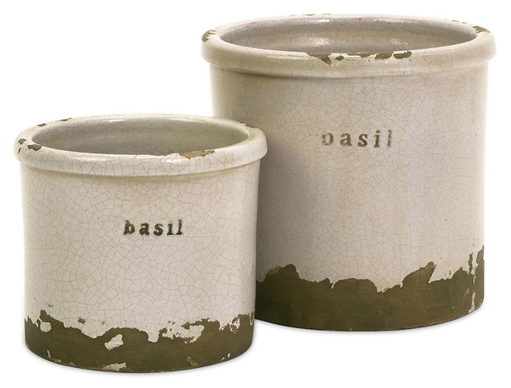 Asst. of 2 Basil Herb Canisters