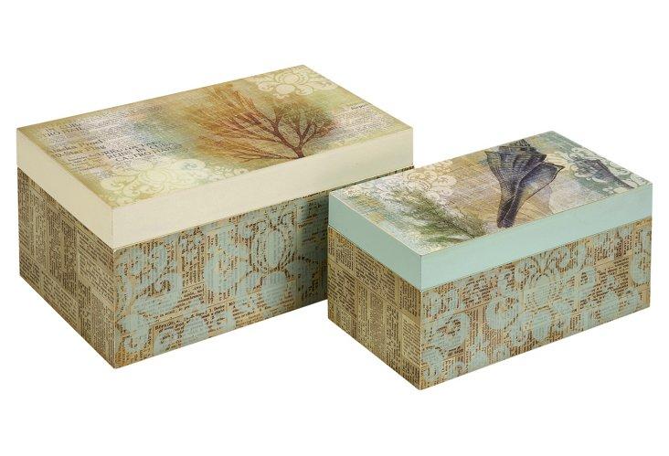S/2 Burton Coastal Boxes