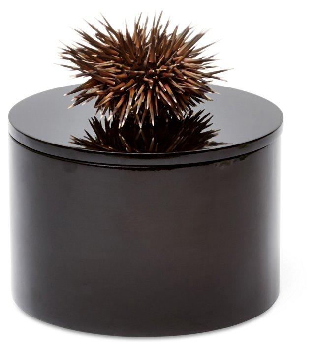 Round Black Box w/ Sea Urchin