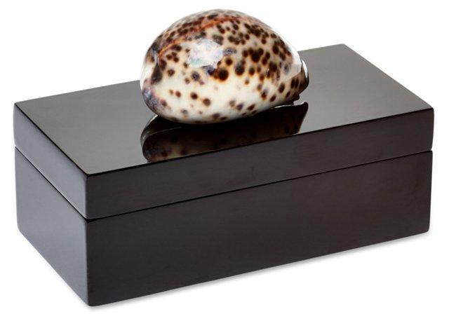 Medium Black Box w/ Tiger Cowrie Shell