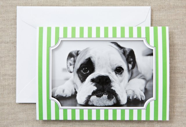 S/16 Photo Cards, Green