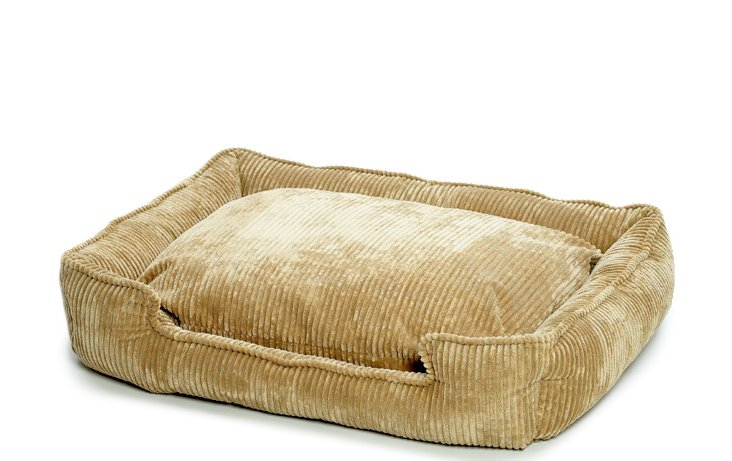 Corduroy Lounge Bed, Honey