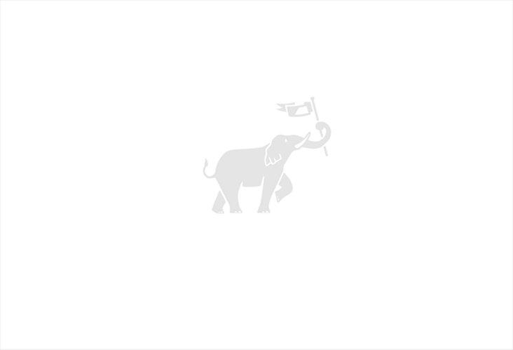 Citrine Murano Bud Vase