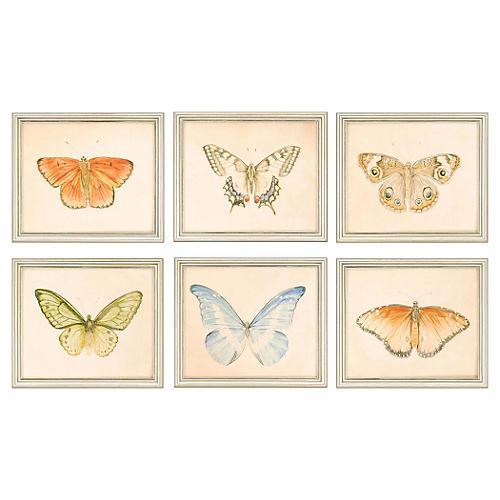 Meagher, Butterflies