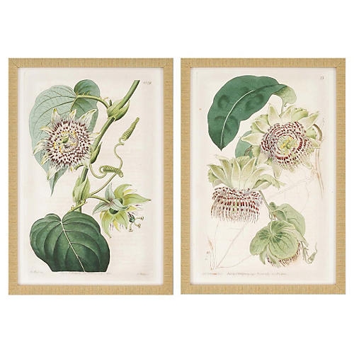 Antique Flowers Pk/2