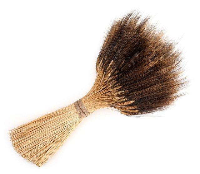 "35"" Blackbeard Wheat Stack, Dried"
