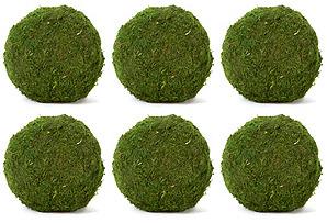 """S/6 6"""" Moss Balls, Dried*"""