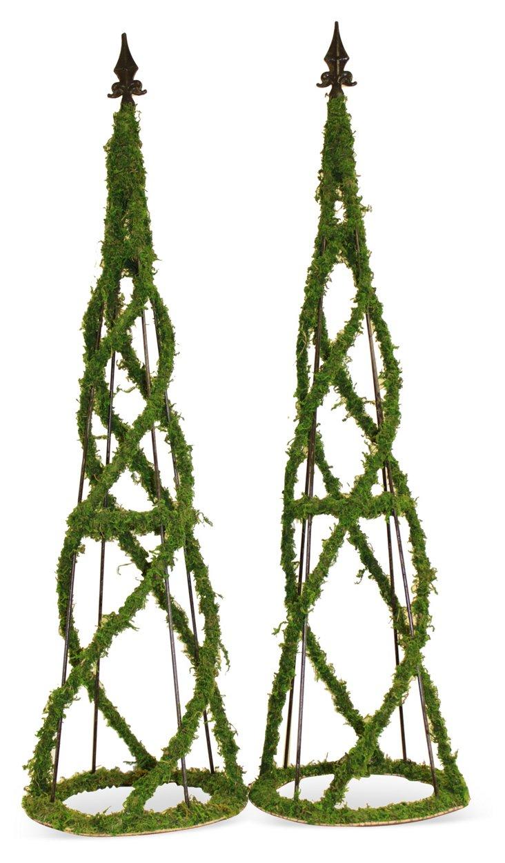 "S/2 45"" Moss Obelisks, Dried"