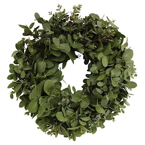 """24"""" Eucalyptus Wreath, Live"""