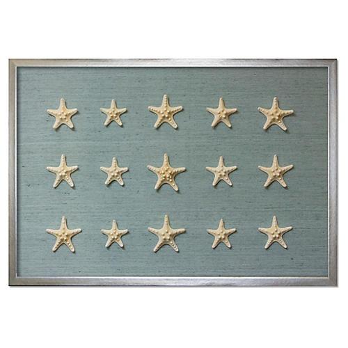 Framed Knobby Starfish, Blue