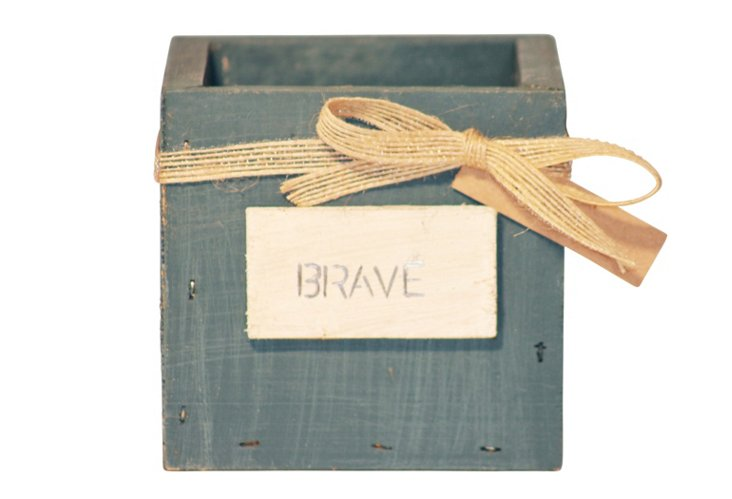 Brave Nest Box