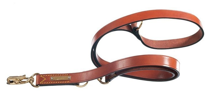 Training Leash w/ Quick Release, Brown