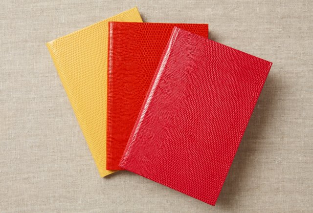 S/3 Journals/Notebooks, Red/Yellow