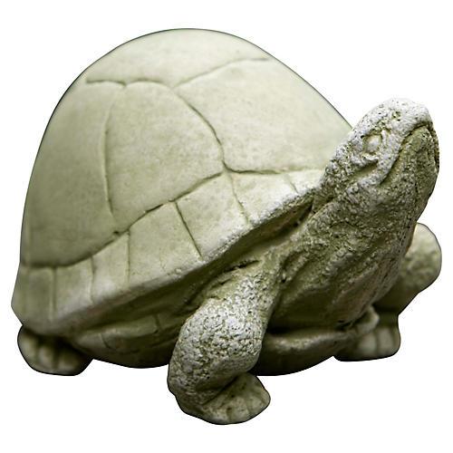 """5"""" Box Turtle, English Moss"""