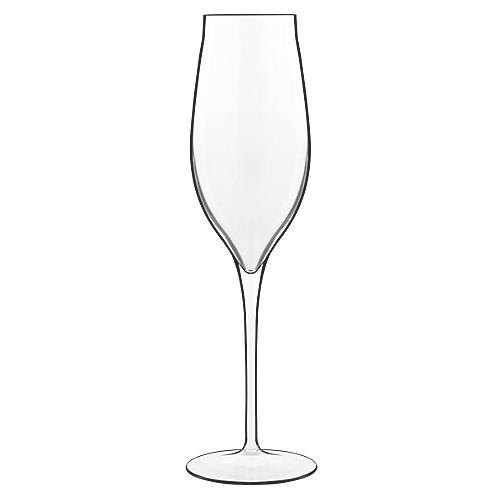 S/2 Vinea Champagne Glasses
