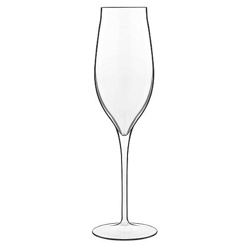 S/2 Vinea Champagne Glasses