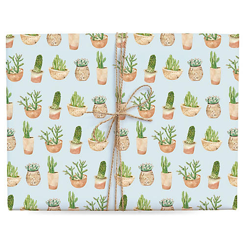 S/3 Succulent Gift Wrap
