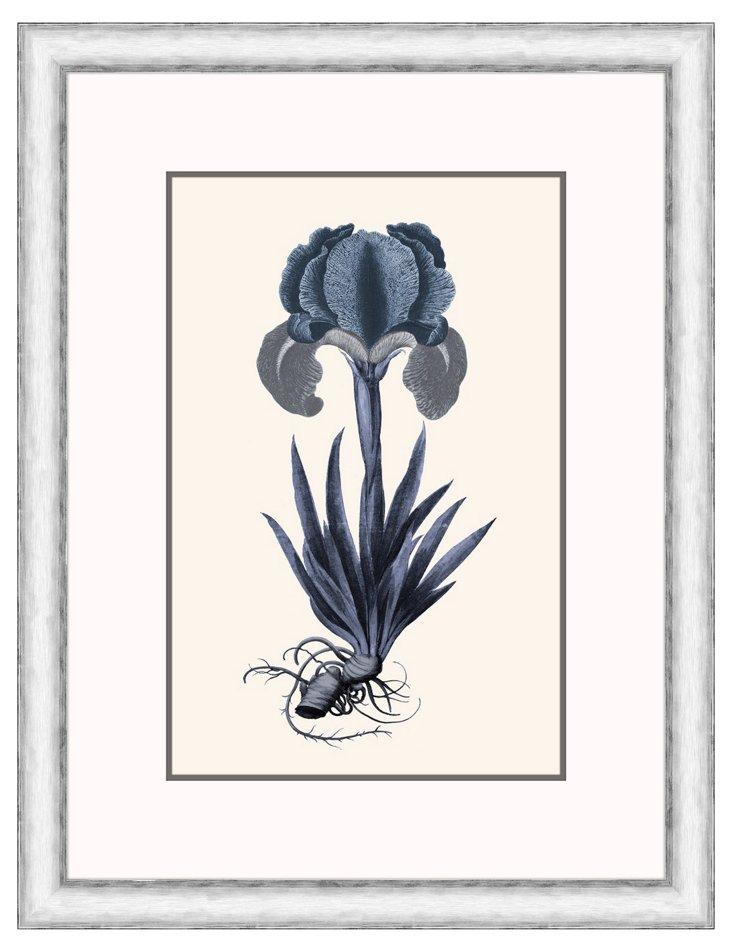 Floral Blues IV