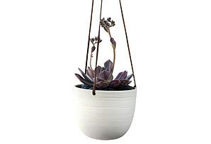 "6"" Scribble Hanging Planter, White"