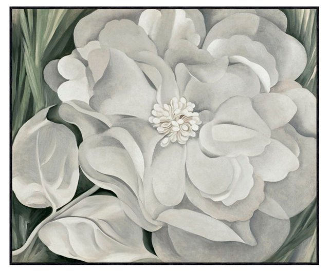 O'Keeffe, The White Calico Flower, 1931