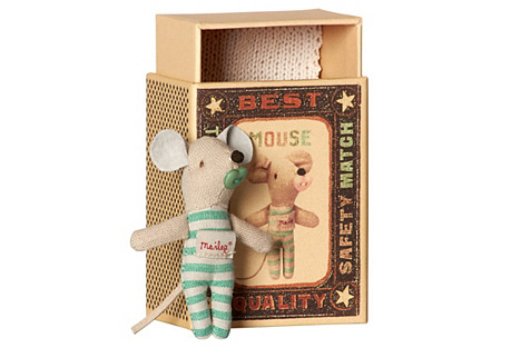Baby Boy Mouse in Box