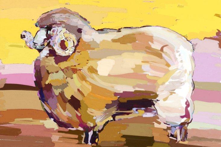 Ry Smith, Sheep