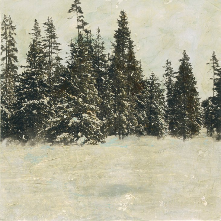 Sara Abbott, Snow Trees II
