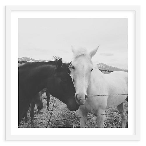 Kevin Russ, Horse Couple