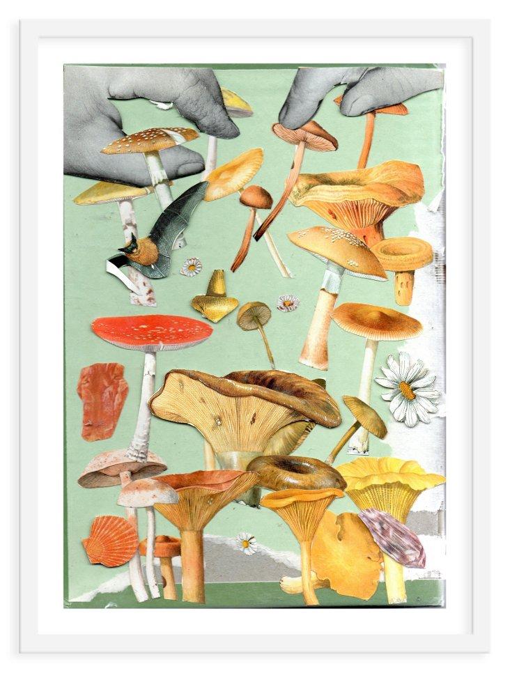 Ben Giles, Mushrooms