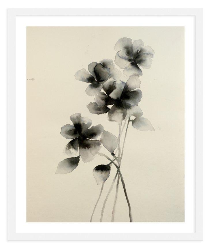 Lourdes Sanchez, Pressed Roses-DNU
