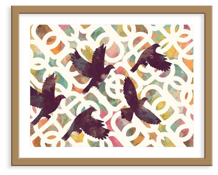 Cozamia, Black Doves