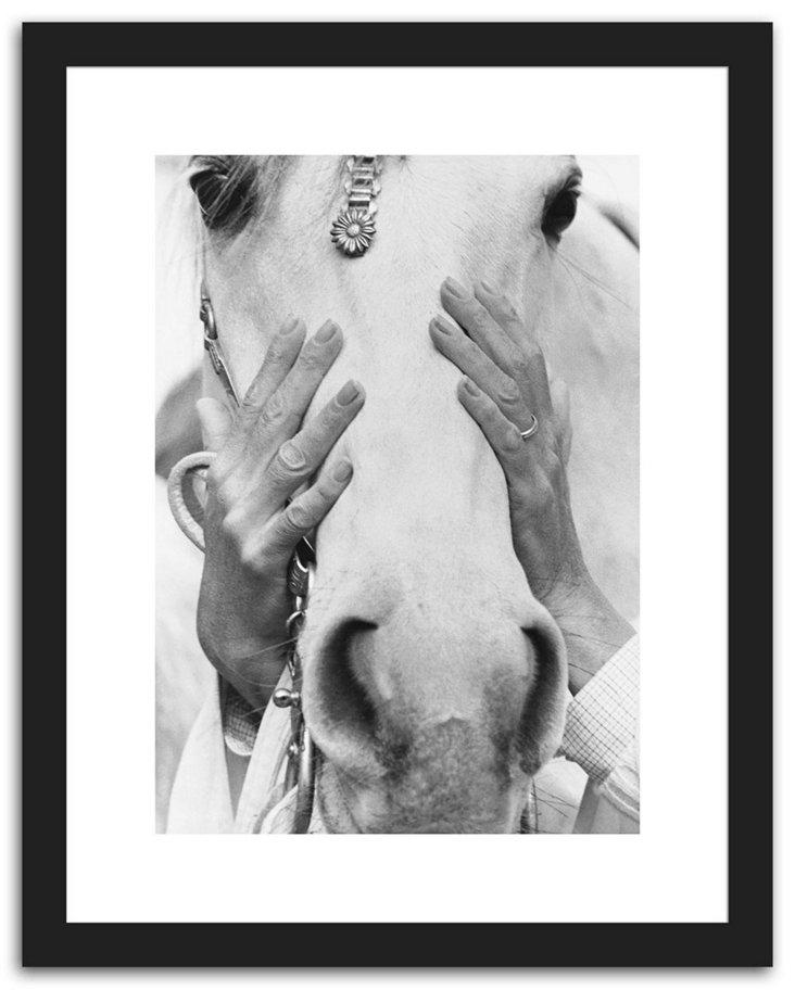 Arabian Horse, September 1968