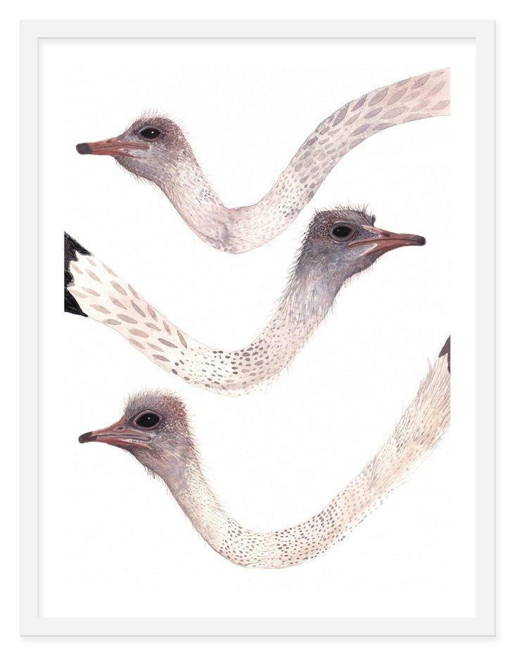 Michelle Morin, Three Ostrich Necks