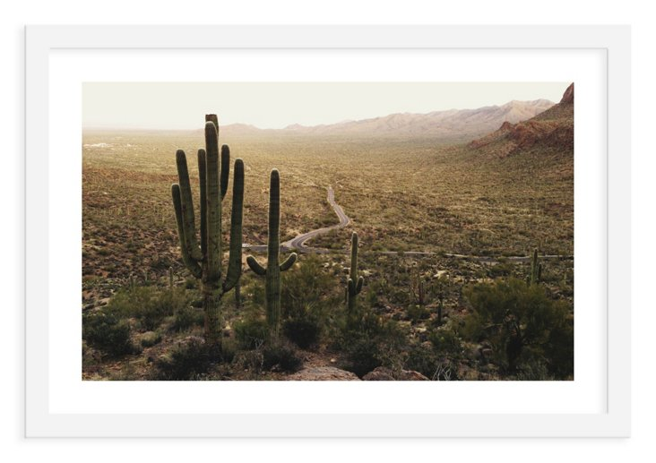 Kevin Russ, Cacti