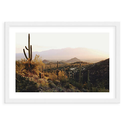 Kevin Russ, Cactus View