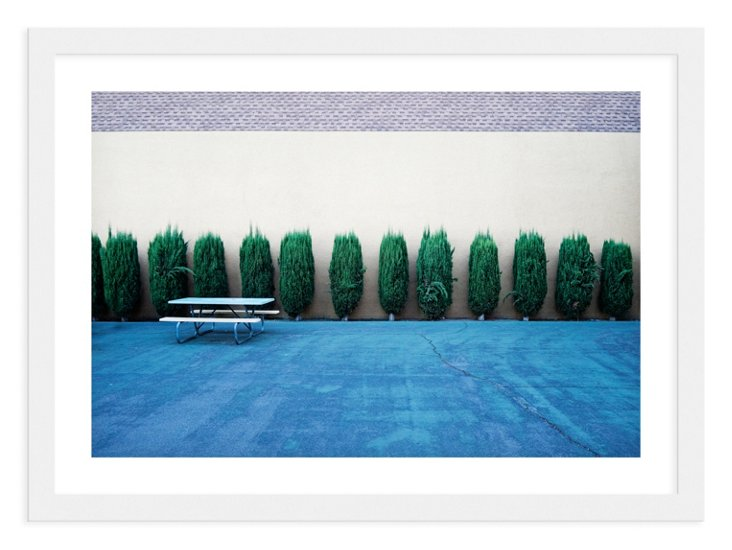 Jeff Seltzer, Bushes and Bench