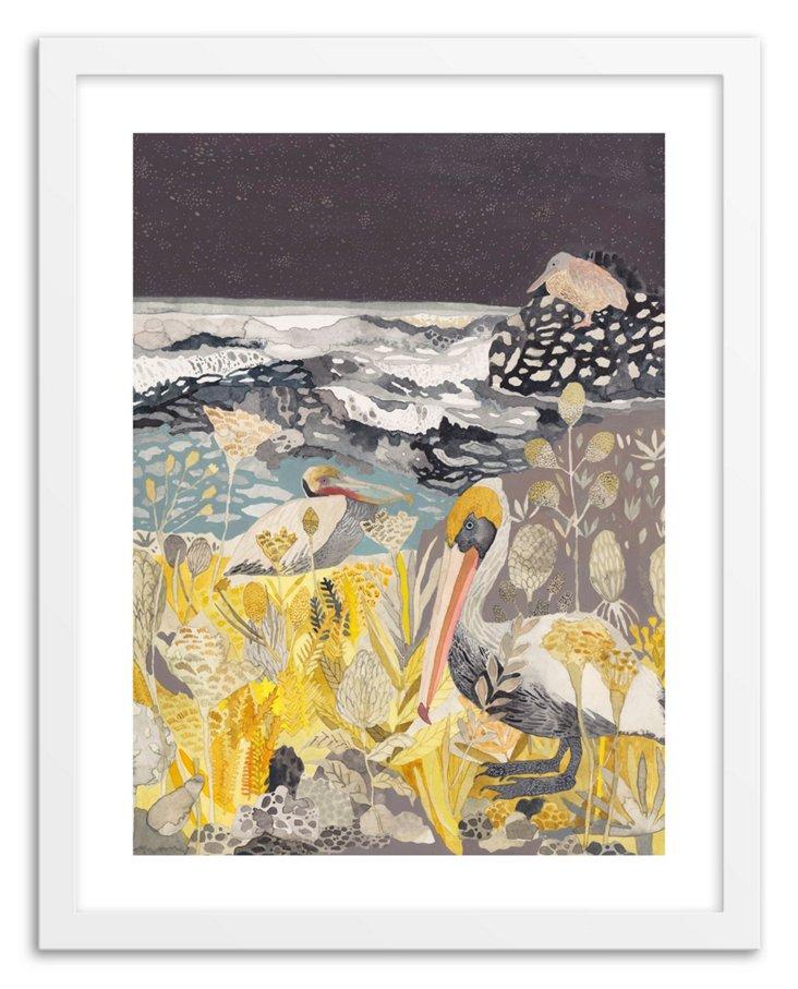 Morin, Winter Pelicans and Yarrow