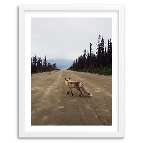 Kevin Russ, Road Fox