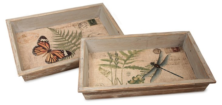S/2 Butterfly & Dragonfly Trays